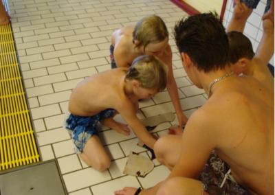 Zwemvestijn-Selectie_219